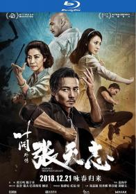 Master Z Ip Man Legacy 2018 BluRay 1080p 2Audio x264