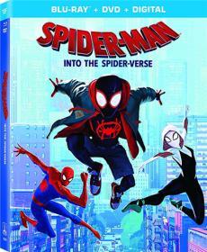 Spider-Man Into the Spider-Verse 2018 BDRip 1 46Gb DUB MegaPeer