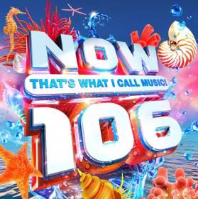 NOW Thats What I Call Music! 106 (2020) Mp3 320kbps [PMEDIA] ⭐️