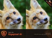 Topaz Gigapixel AI v5 1 7 (x64) + Fix