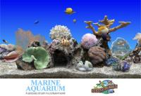 SereneScreen Marine Aquarium v3 3 6381 + Fix