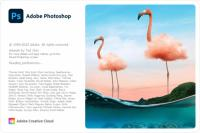 Adobe Photoshop 2021 v22.1.1.138 (x64) Multilingual (Pre-Activated) [FileCR]